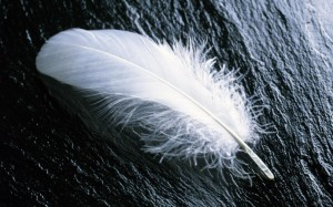 Angel-Feather-690x431
